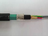 圖貳-5 光纜側視圖