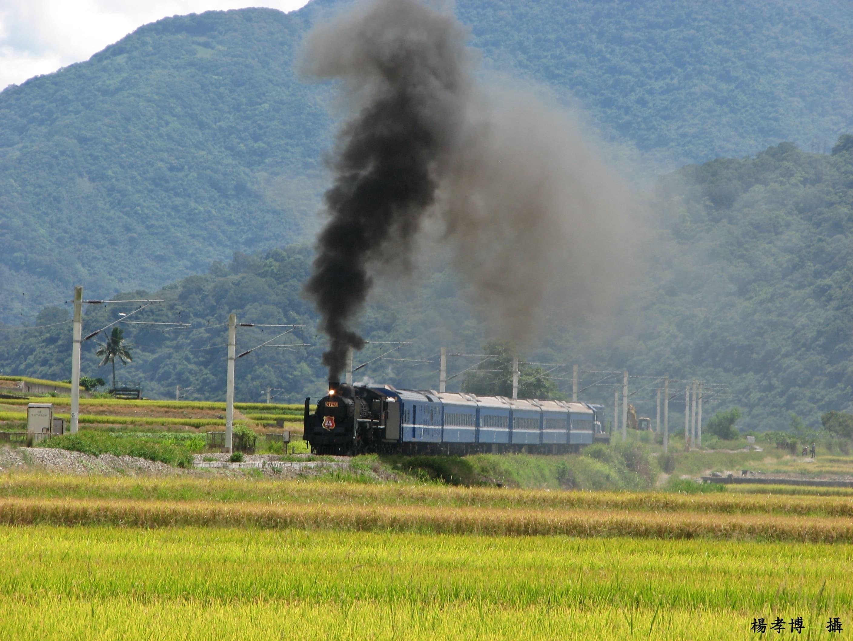仲夏寶島號行程照片6